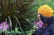 Where-Wild-Grass-Grows-Hat-AEWhite-full